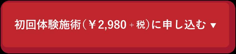 初回体験施術(2,980円)に申し込む