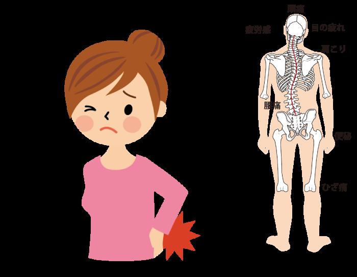 腰痛、体の歪み